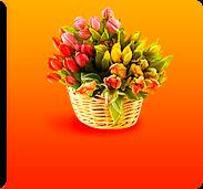 Цветы в Красноярске