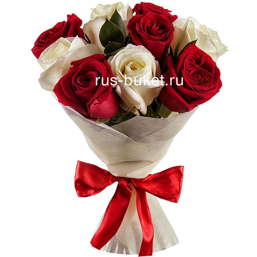 белых и красивое красных роз фото