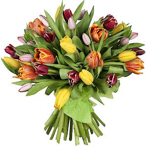 Тюльпаны (35 шт.) с доставкой в Москве