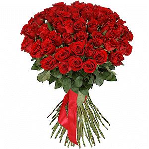 51 красная роза премиум с доставкой в Москве