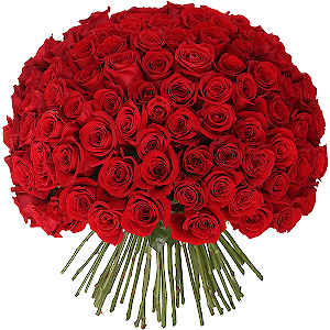 buy a bouquet of flowers 101 red roses in moscow russian. Black Bedroom Furniture Sets. Home Design Ideas