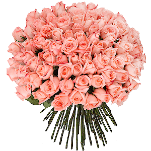 Букет из 101 розовой розы с доставкой в Москве
