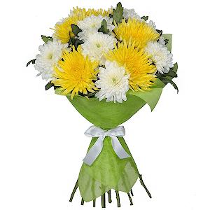 Хризантема одиночная