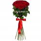 Роза красная 70см - 15, Лента